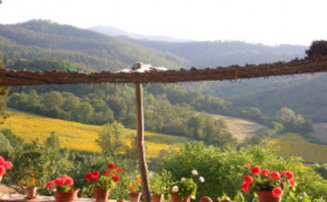 """Under the Tuscan Stars"" - SUMMER TUSCANY RETREAT *Special Launch Price!*"