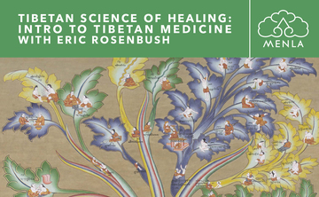Introduction to the Healing Science of Tibetan Medicine