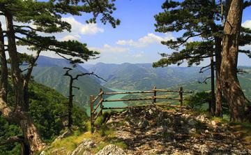 Magic Mountain Yoga and Meditation Retreat