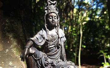 3-Day Heart Awakening Silent Meditation Retreat in New Zealand