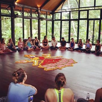 300hr Advanced High Vibe Yoga Teacher Training