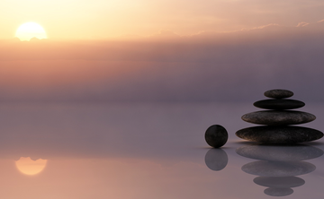 The Shanti System:  A Pathway to Greater Health, Peace & Well-Being