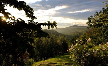 Health & Therapy Retreat Week in Tuscany, Italy