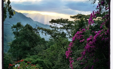 10 Day Sacred Medicine Retreat in Colombia