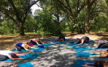 Sonoma Yoga and Wine Tasting Day Retreat