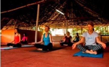 200 Hour Yoga TTC, India