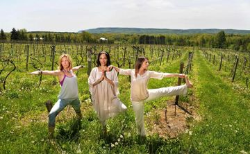 Yoga and Wine Retreat with True North