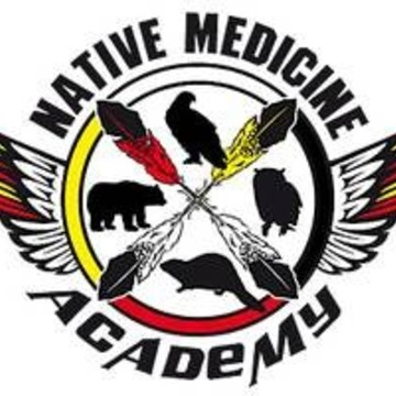 medicine turtle cherokee