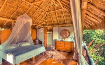 Embrace Your Purpose: Live Your Bliss Yoga Retreat | Best Yoga Vacations in Sayluita, Mexico | Seek Retreat