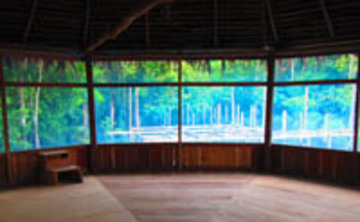Jungle Jeannie's Ayahuasca Healing Retreat