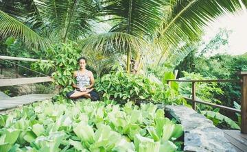 St. Croix Universal Yoga and Ayurveda Retreat- January 26-30, 2017