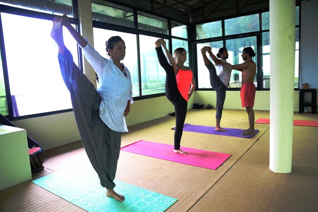 nyasa yoga kundalini prana chakra and nadi cultivation techniques