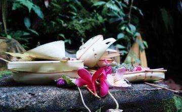 Yoga und Mentaltraining in Bali