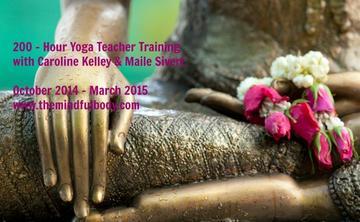 Yoga Teacher Training & Intensive Studies