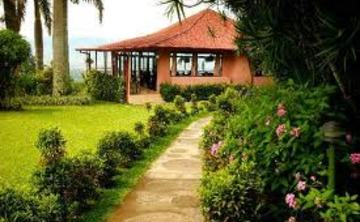 Explore the Elements: Yoga Retreat in Costa Rica