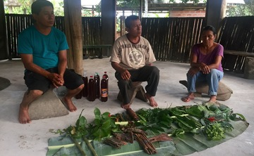 12-night Ayahuasca Medicine Retreat in the Amazon Rainforest of Ecuador