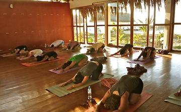 200 RYT Vinyasa Flow Yoga Teacher Training