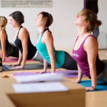 Hatha Yoga School Rishikesh