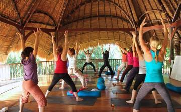200 Hr Dynamic Spiral & Yin Fascial Yoga Teacher Training