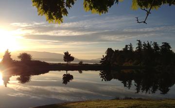 5th Annual Cascadia Insight Dialogue Retreat