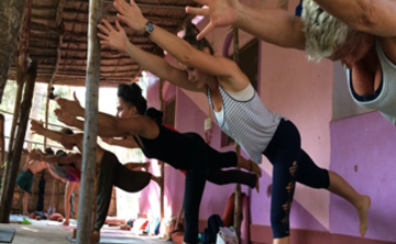200 Hour Yoga Teacher Training* at PURE with the Kashmir Shaivism School of Yoga from India.  *Yoga Alliance Certification
