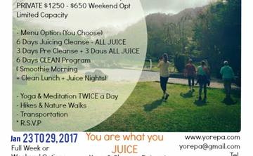 You are What you Juice - The January Detox Retreat