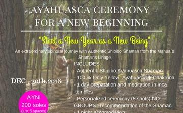 Ayahuasca Ceremony for new year