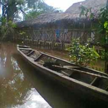 Ayahuasca Adventure Amazon Healing Center