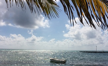 Island Yoga Retreat