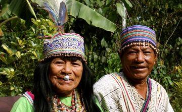 9 Day Ayahuasca, Yoga & Meditation Retreat with Traditional Shipibo Healers
