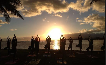 YOGA, SURF, SHAMANIC HEALING & NATURE IMMERSION: BRAZILIAN ATLANTIC RAINFOREST