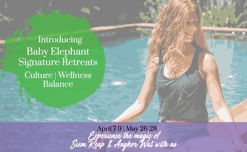 Baby Elephant Signature Siem Reap Retreats 2017