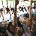 The Yoga Retreat, KohPhangan