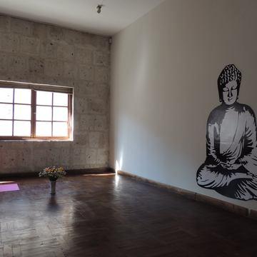Vinyasa Flow Yoga School - Teacher Training