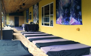 3 day 2 Night Ayahuasca vine only detox retreat-Apr. 28-30