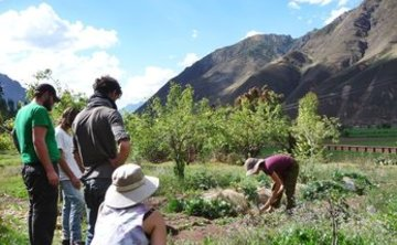 VOLUNTEER – Main Community Residence – Pisac