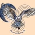 Blue Owl Mystery Arts