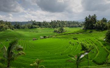 Bali 2017 - 30 Days in Paradise