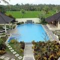 Bali Energy Transmission Training