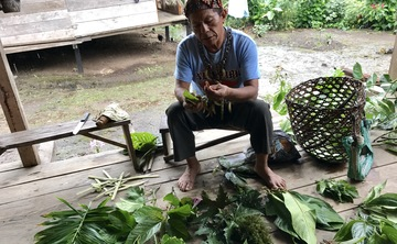 12 Day Ayahuasca and Plant Medicine Retreat in the Upper Amazon I