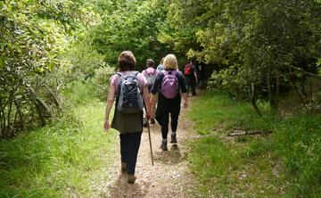 Walkinginspirit - Mindful Walking and Nature Immersion Retreat