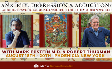 Anxiety, Depression & Addiction: Buddhist Psychological Insights for Mental & Spiritual Health for Modern World