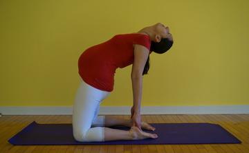 Le Yoga Prénatal / Teaching Prenatal Yoga