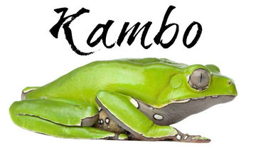 3 day 2 Night Kambô Cleanse Ceremony July 7-9