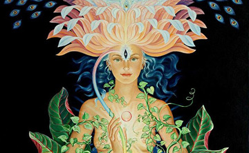 Ayahuasca retreat: Re-Member who you are(28-30 July 2017)
