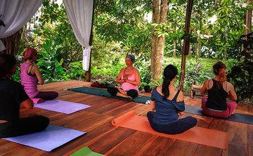 Yoga Alliance Teaching Training with Certified Yogi instructor Corinne Aulakh.