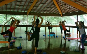 Marianne Wells Yoga Alliance 200 RYT Yoga Teacher Training