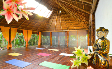 la Selva Jungle Retreat
