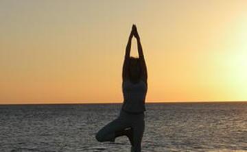 "Program 3 ""Yoga Lifestyle Programs"""