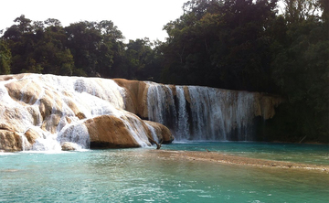 All Included 8 days YOGA RETREAT in the Mexican Jungle! (Palenque, Chiapas)